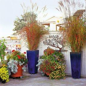 Tall Flower Pots Ideas On Foter