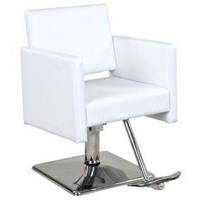 Salon Chairs - Ideas on Foter