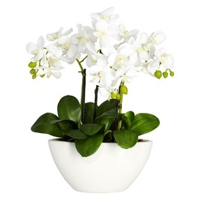 Nearly Natural 4804 Phalaenopsis Silk Flower Arrangement, White