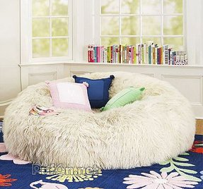 Fuzzy bean bag