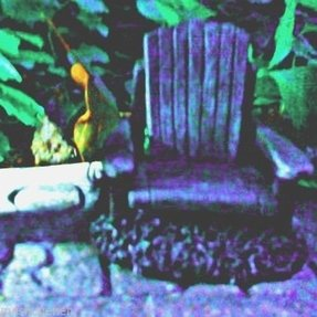 home decor outlet on summer resin adirondack chairs foter 12361