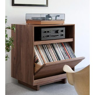 Stereo Storage Cabinet Ideas On Foter