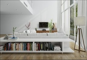 Scandinavian Bookcases 4 This Low Bookcase Behind The Sofa