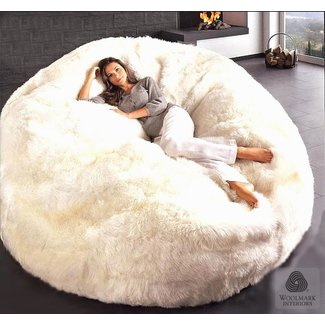 Furry Bean Bags Ideas On Foter