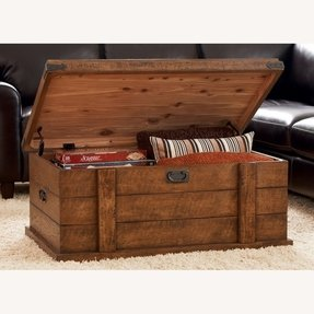 Storage trunk furniture