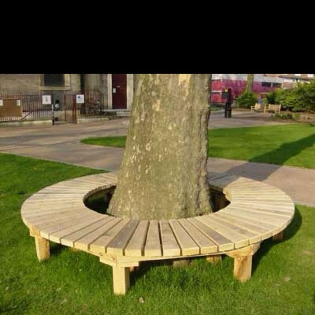 Tree Benches Ideas On Foter