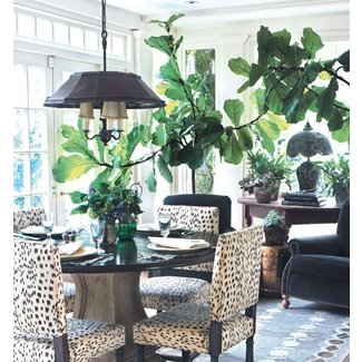Animal Print Dining Room Chairs - Ideas on Foter