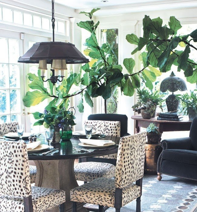 Zebra Dining Room Set