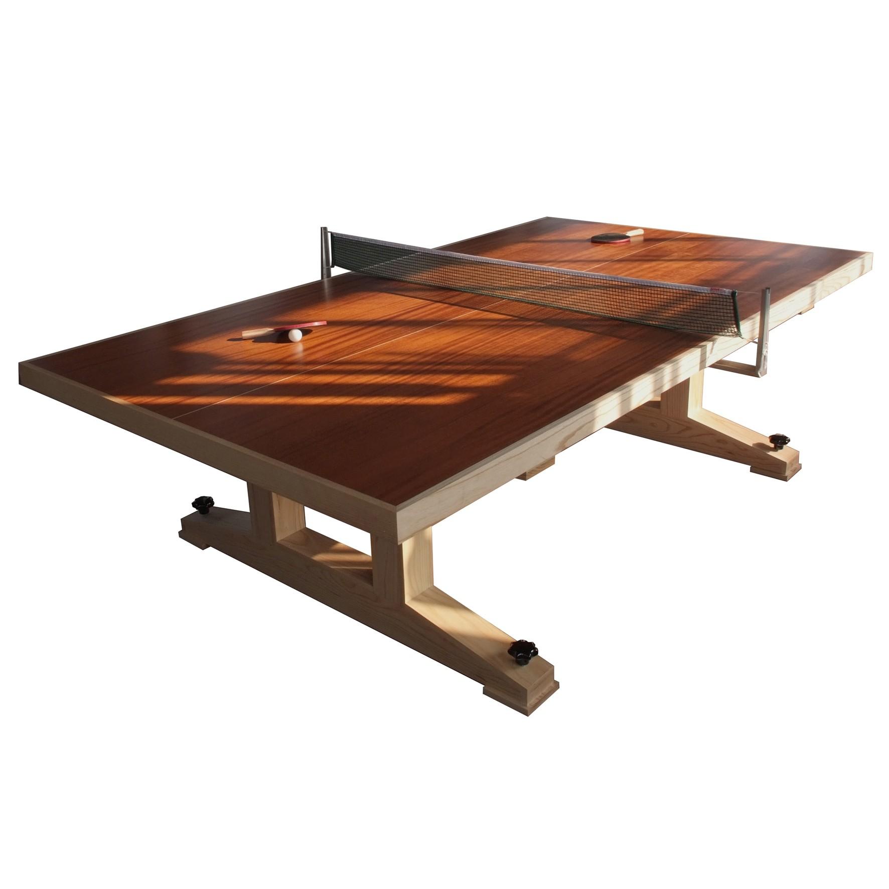 Designer Ping Pong Table 2
