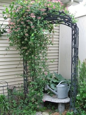Iron Arbors And Trellises Foter