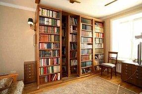Bookshelf Sliding Door