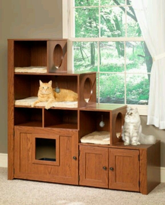 Bookcase climber litter box cabinet cat furniture  sc 1 st  Foter & Furniture Cat Litter Box Cabinet - Foter