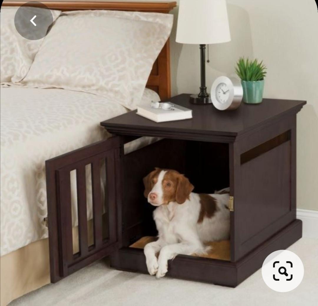 dog house indoor