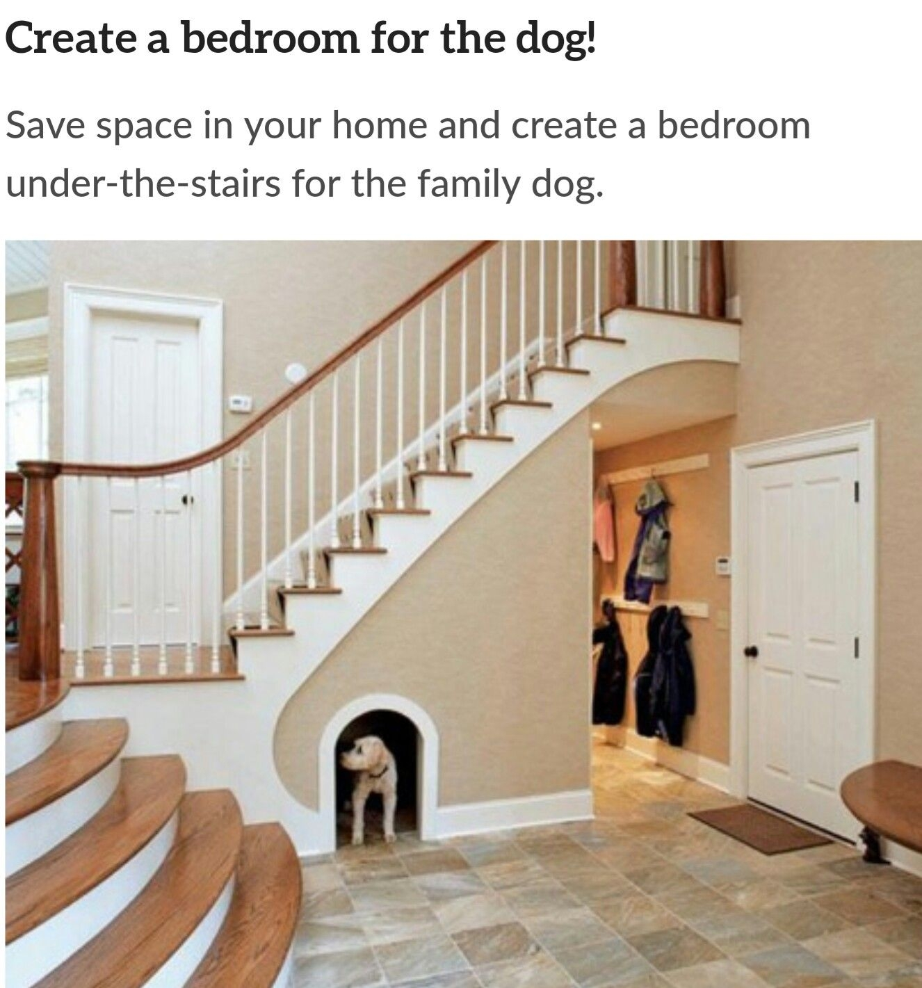 Dog Bedroom Furniture 10