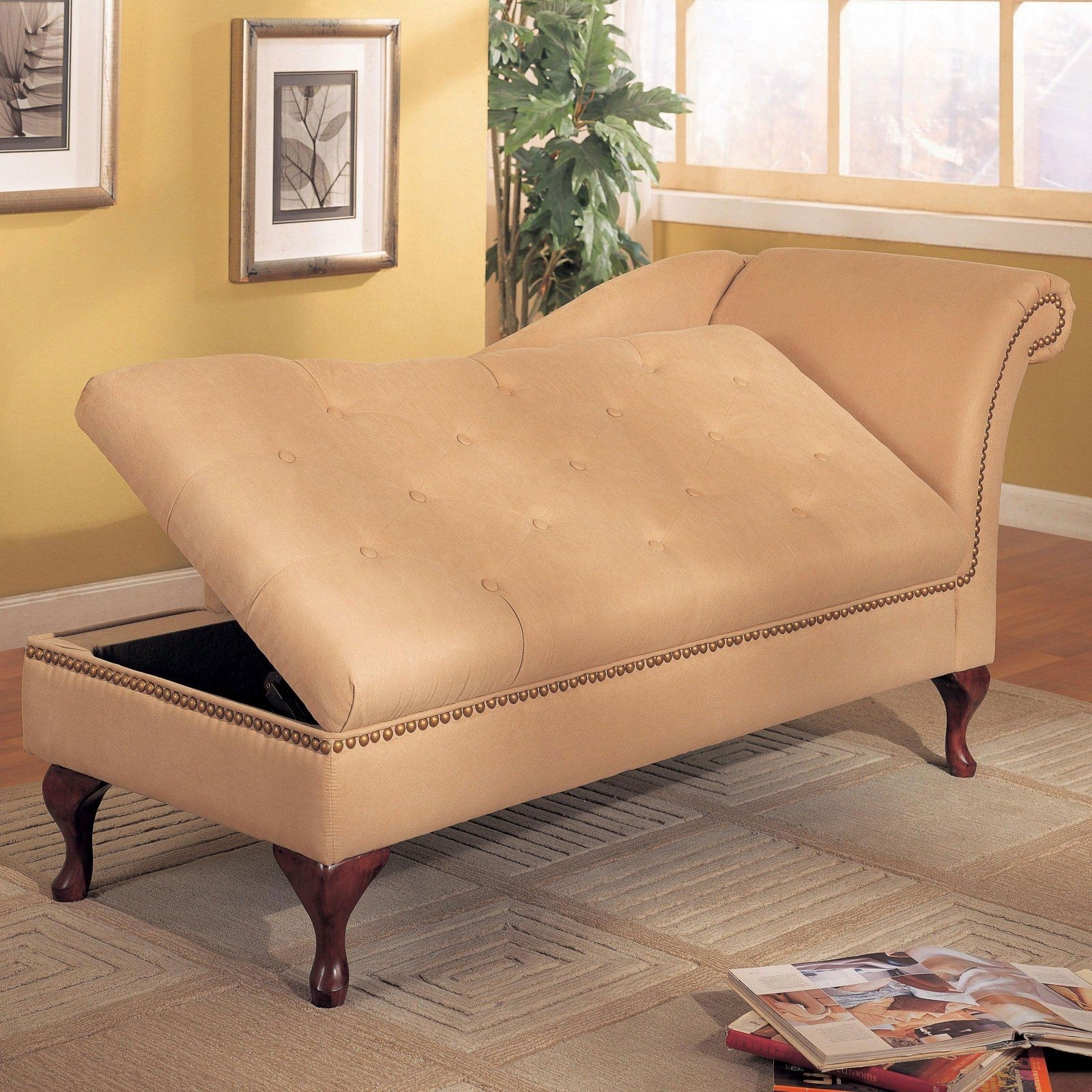 Attractive Storage Chaise Lounge 1
