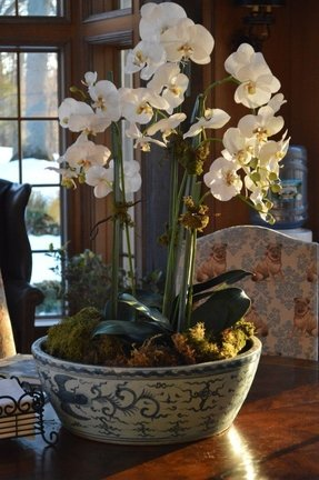 Faux Orchid Arrangements