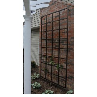 Metal Garden Arbors And Trellises - Ideas on Foter on wood trellis patterns, wood trellis kits, wood bed frames designs, custom wood trellis designs, wood stacking designs, wood outdoor furniture designs, wood arbor plans, wood garden art, wood for trellis, wood screws designs, wood garden gates, wood trellis designs ideas, wood trellis overhead, wood trellis design plans, wood garden wall trellis, wood trellis details, wood smokehouse designs, wood garden trellis plans, wood trellis fence plans, wood rose trellis,