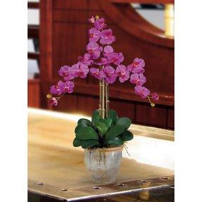 Artificial Orchid Arrangement Ideas On Foter