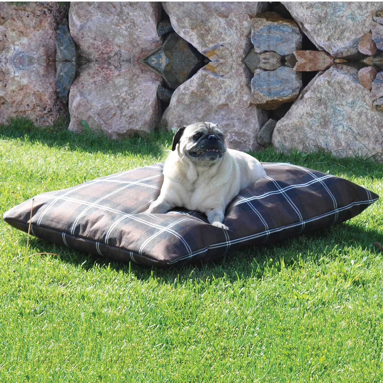 Outdoor Dog Furniture Ideas On Foter