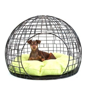 Dome Dog Bed Ideas On Foter