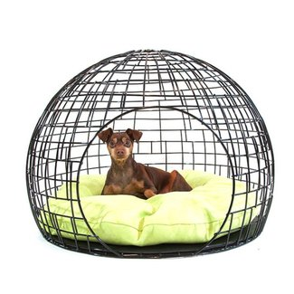 The co op pet home black