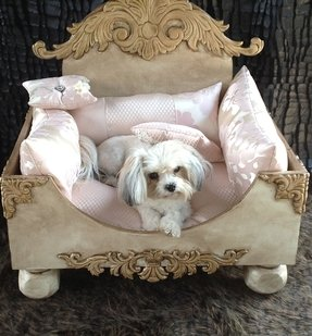 Furniture style dog beds 1