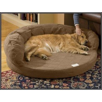 Large Dog Furniture