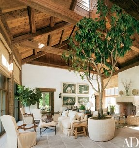 Large Indoor Planters - Foter