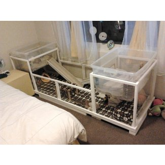 Cheap animal cages 9