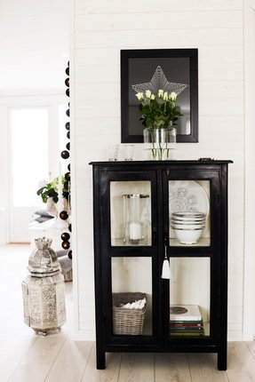 Best Of Glass Front Storage Cabinet