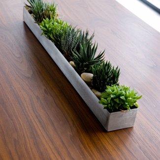 Rectangular Indoor Planter Ideas On Foter