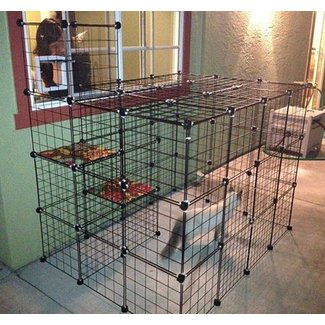 Indoor Cat Cages Enclosures Foter