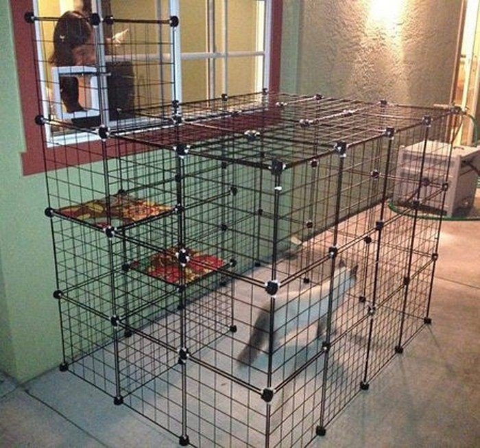 Indoor Cat Cages Enclosures