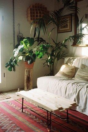 Wood Plant Stand Indoor Foter