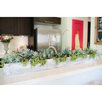 Rectangular Indoor Planter - Foter