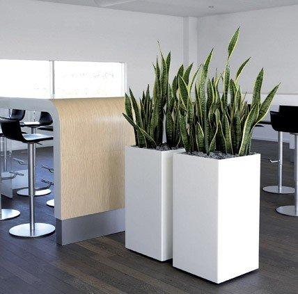 Bon Tall Indoor Planters