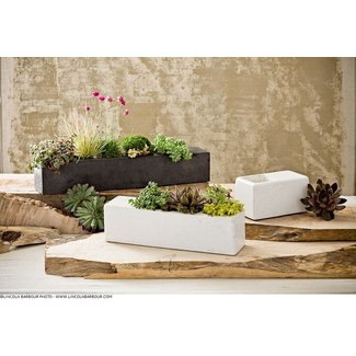 Terrene by transom design modern indoor pots and planters portland