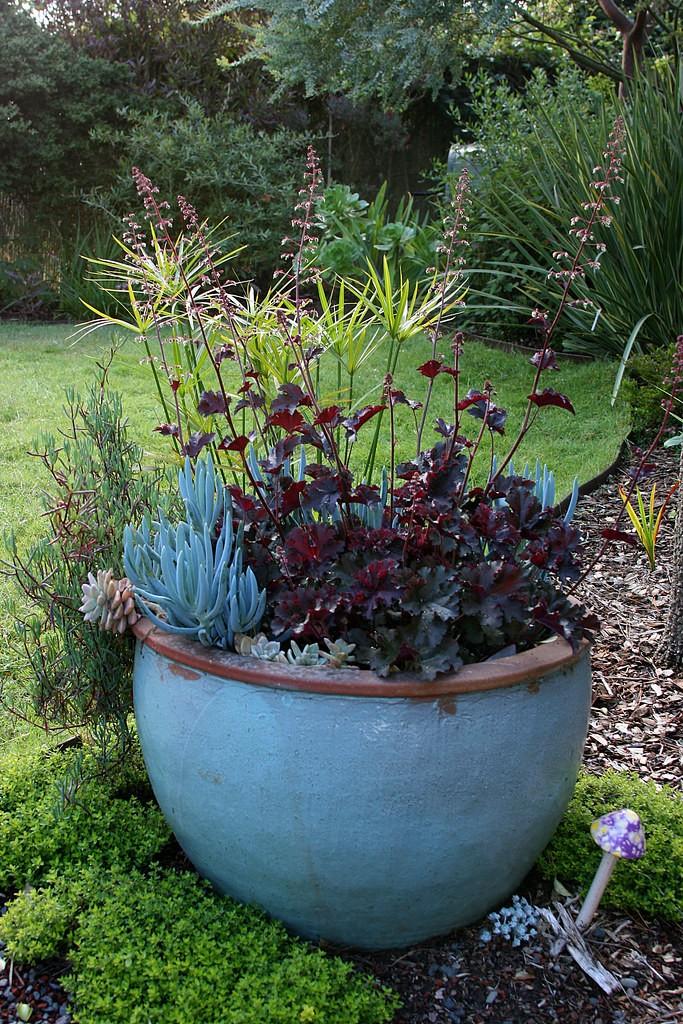 Ceramic Garden Pots