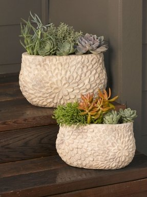 Large Ceramic Outdoor Planters - Ideas on Foter
