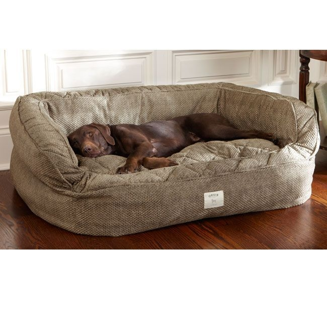 pet couch bed foter rh foter com Chair and a Half Beds Twin Bed Sofa