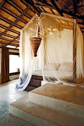 Canopy Platform Bed Ideas On Foter