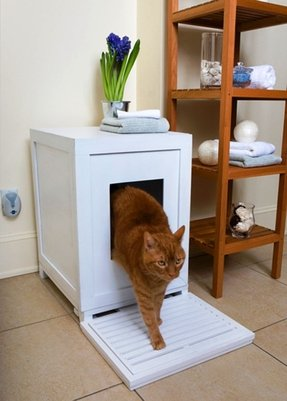 Outdoor litter box enclosure