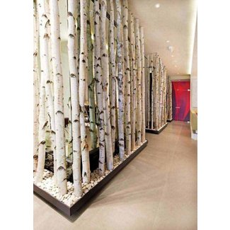 Bamboo Wall Divider Ideas On Foter