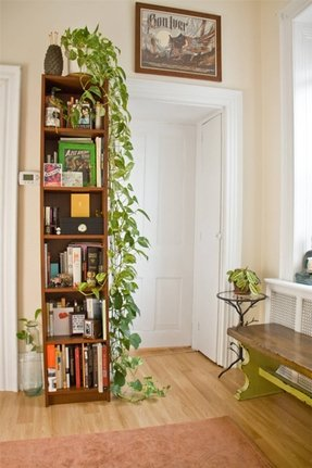 Indoor Plant Table - Foter