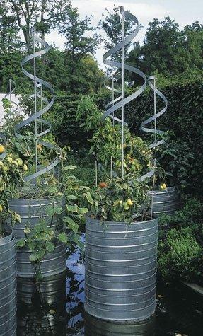 Tall Garden Trellis Foter