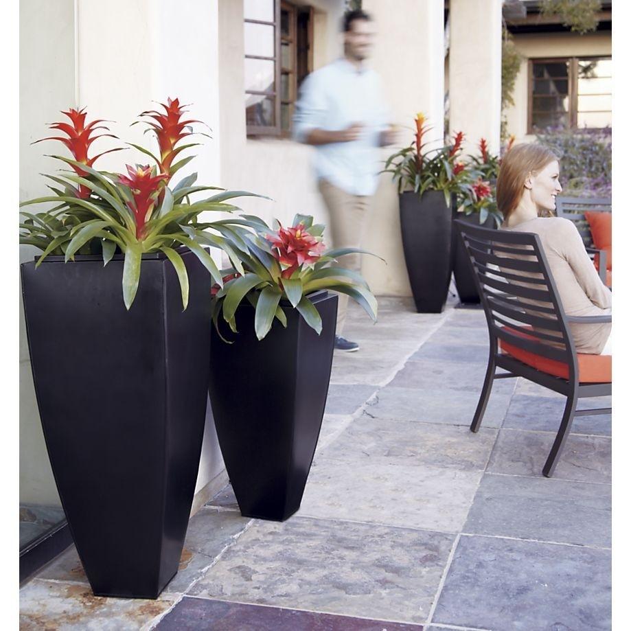 Indoor Ceramic Planters