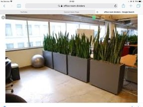 office planter. Office Planter. Plants For Tall Planters Planter