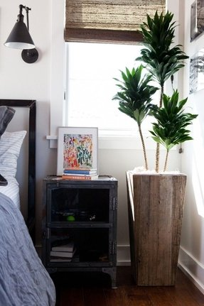 Tall Indoor Planters - Foter