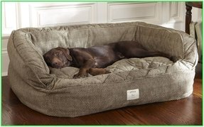 Covered dog bed
