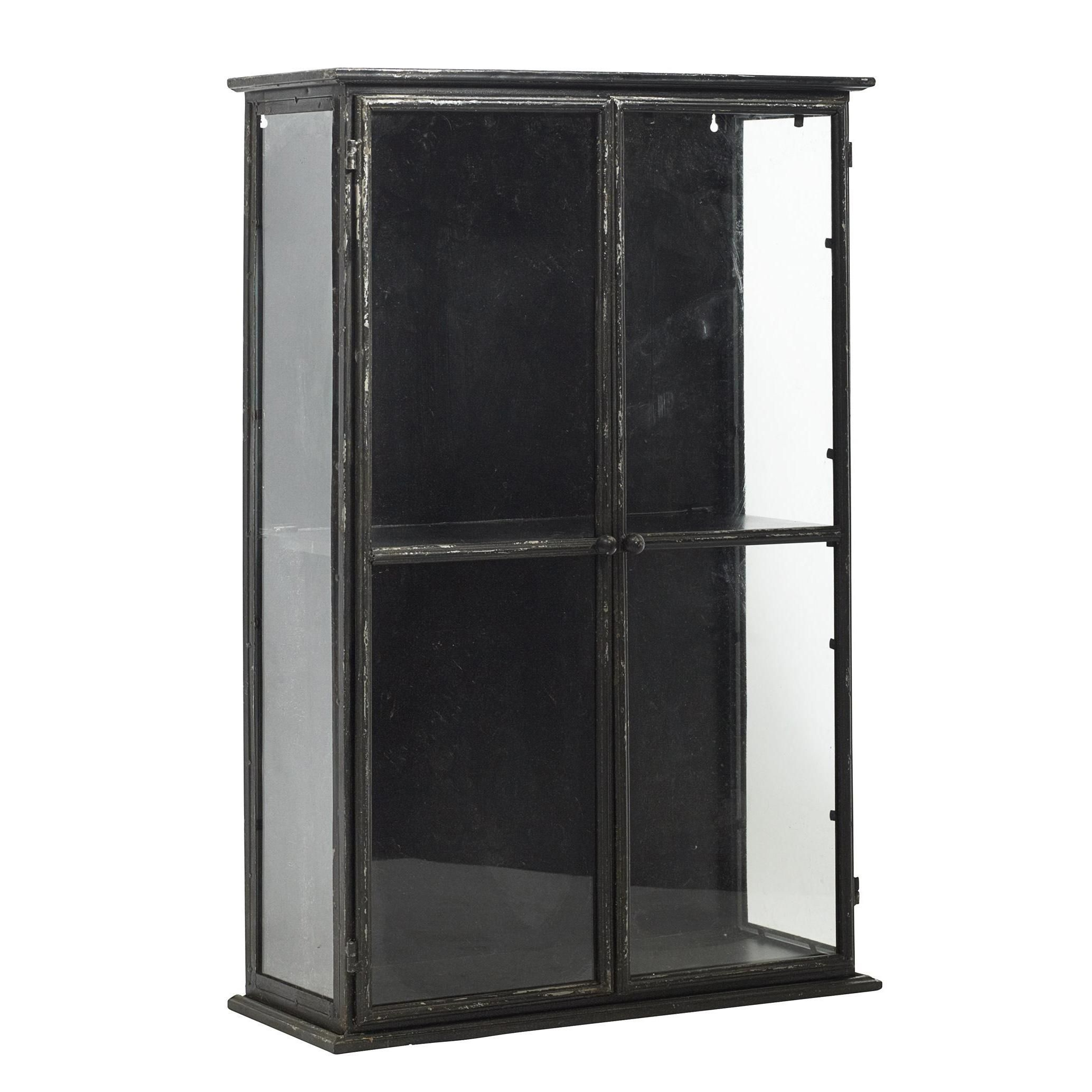 Delicieux Metal Cabinet With Glass Doors